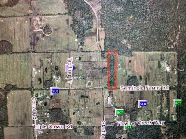 1150 Seminole Farms Road, Osteen, FL 32764 (MLS #O5761530) :: Griffin Group