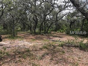 5200 Millstream Drive, Groveland, FL 34736 (MLS #O5762355) :: Heckler Realty