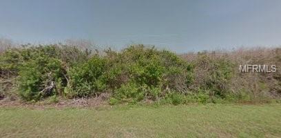 8452 Elk Avenue, Palm Bay, FL 32909 (MLS #O5771248) :: The Dan Grieb Home to Sell Team