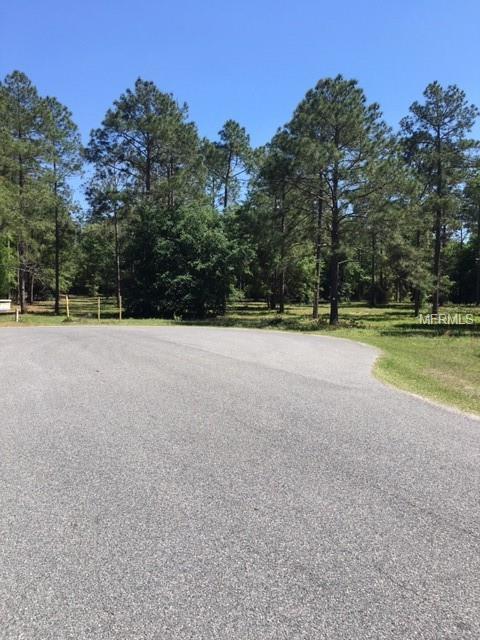 35734 High Pines Drive, Eustis, FL 32736 (MLS #O5772403) :: The Duncan Duo Team