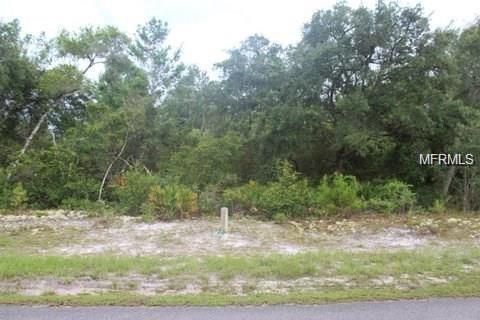 Larkspur Avenue, Eustis, FL 32736 (MLS #O5776173) :: The Duncan Duo Team