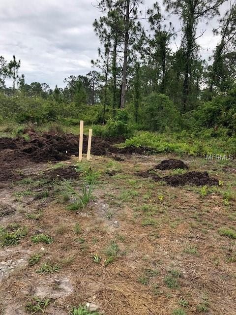 2000 Jackson Avenue, Alva, FL 33920 (MLS #O5777189) :: Cartwright Realty