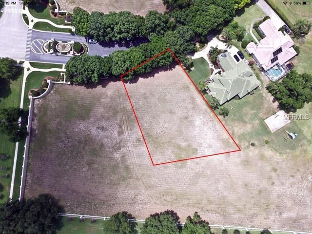 Harbor Isle Drive, Windermere, FL 34786 (MLS #O5778716) :: Bustamante Real Estate