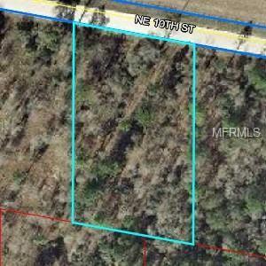 Ne 10 Street, Williston, FL 32696 (MLS #O5778803) :: Pristine Properties