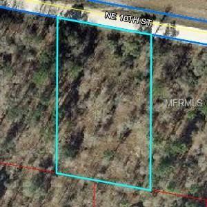 Ne 10 Street, Williston, FL 32696 (MLS #O5778808) :: Pristine Properties