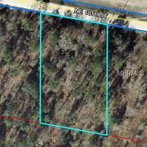 Ne 10 Street, Williston, FL 32696 (MLS #O5778815) :: Pristine Properties