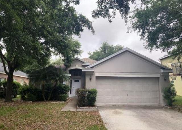 19140 Dove Creek Drive, Tampa, FL 33647 (MLS #O5779640) :: KELLER WILLIAMS ELITE PARTNERS IV REALTY