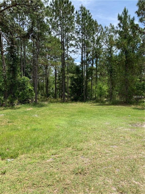 570 Antler Avenue, Osteen, FL 32764 (MLS #O5782033) :: Team Bohannon Keller Williams, Tampa Properties