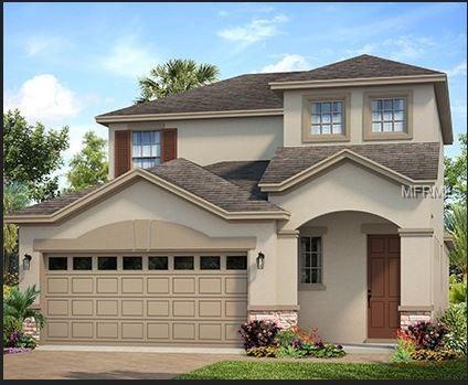 6110 Colmar Place, Apollo Beach, FL 33572 (MLS #O5786531) :: RE/MAX Realtec Group