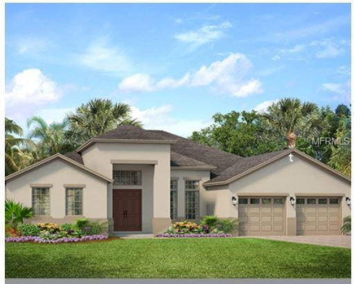 2935 Florida Bay, Orlando, FL 32824 (MLS #O5786800) :: The Duncan Duo Team