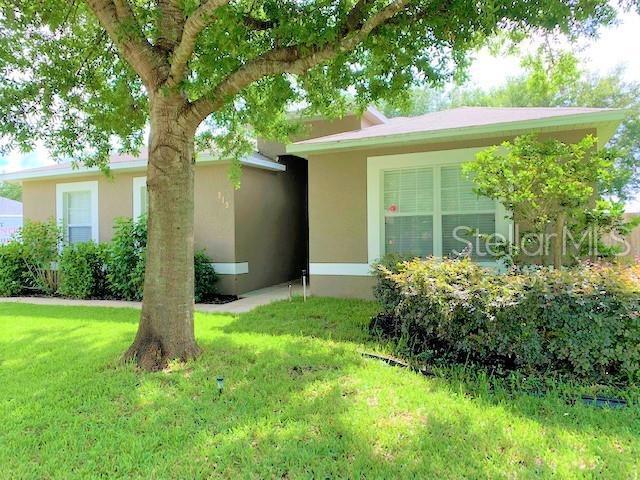 313 Winding Cove Avenue, Apopka, FL 32703 (MLS #O5790282) :: Cartwright Realty