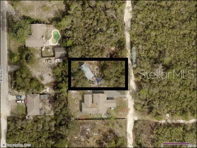S Division Avenue, Orange City, FL 32763 (MLS #O5791429) :: Cartwright Realty
