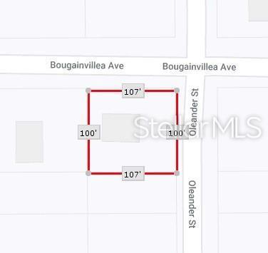 45717 Oleander Street, Paisley, FL 32767 (MLS #O5791448) :: The Duncan Duo Team