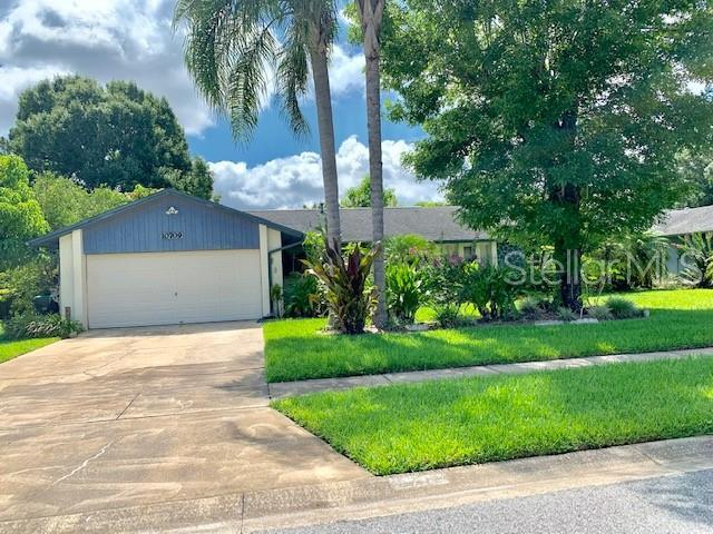 10709 Ramblewood Road, Orlando, FL 32837 (MLS #O5793246) :: Team 54