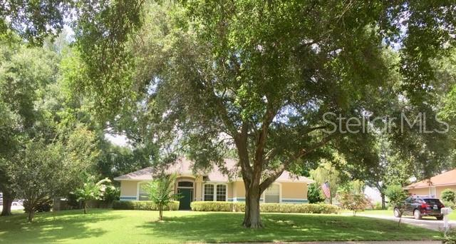10605 Point Overlook Drive, Clermont, FL 34711 (MLS #O5794225) :: The Duncan Duo Team
