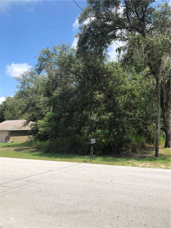 Hemlock Radial, Ocala, FL 34472 (MLS #O5798705) :: Bridge Realty Group