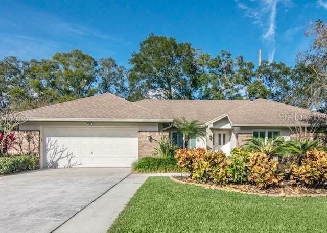 3319 Cheviot Drive, Tampa, FL 33618 (MLS #O5799188) :: Dalton Wade Real Estate Group