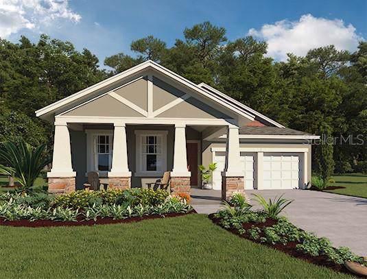 14263 Aldford Drive, Winter Garden, FL 34787 (MLS #O5799688) :: NewHomePrograms.com LLC