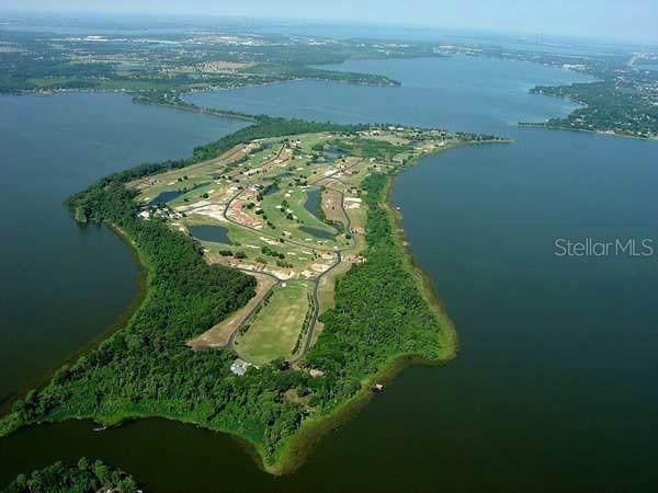 Live Oak Drive, Tavares, FL 32778 (MLS #O5800104) :: Paolini Properties Group