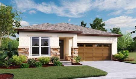 369 Casa Verano Lane, Davenport, FL 33897 (MLS #O5800526) :: Griffin Group