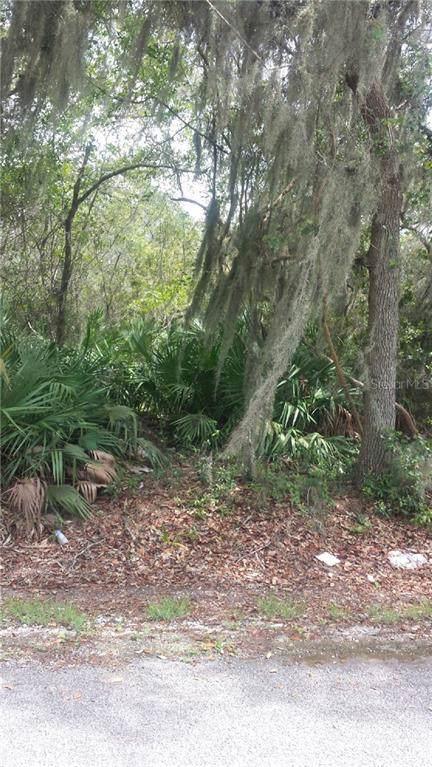 259 Toms Road, Debary, FL 32713 (MLS #O5801378) :: The Duncan Duo Team