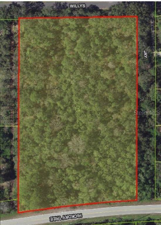 Hickory Tree Road, Saint Cloud, FL 34772 (MLS #O5801514) :: The Duncan Duo Team