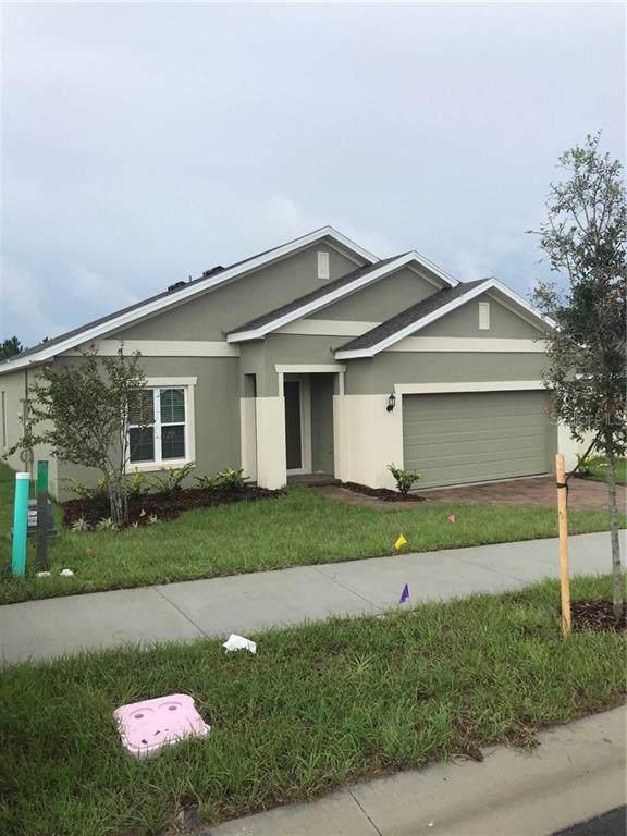 214 Hydra Way, Groveland, FL 34736 (MLS #O5804384) :: Griffin Group