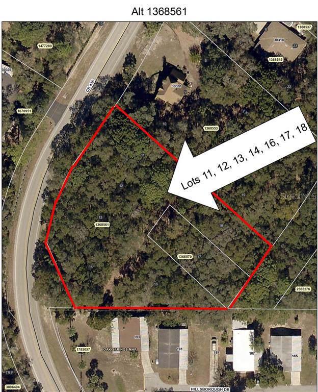 County Road 435, Mount Plymouth, FL 32776 (MLS #O5805756) :: Charles Rutenberg Realty