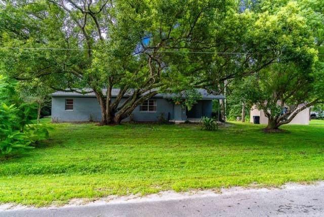 15813 Trigonia Street, Orlando, FL 32828 (MLS #O5806557) :: Team Vasquez Group