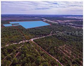 International Drive, Orlando, FL 32821 (MLS #O5808782) :: Rabell Realty Group