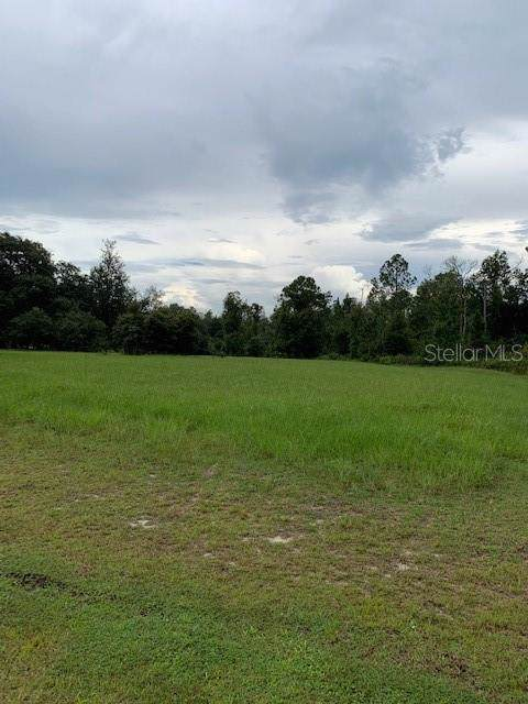 Greengrove Boulevard, Clermont, FL 34711 (MLS #O5809190) :: Homepride Realty Services