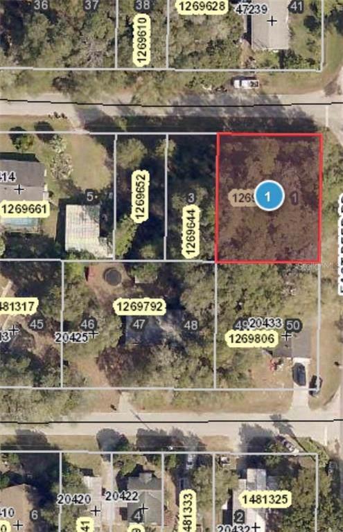 20433 Greenwing Road, Altoona, FL 32702 (MLS #O5809468) :: Homepride Realty Services