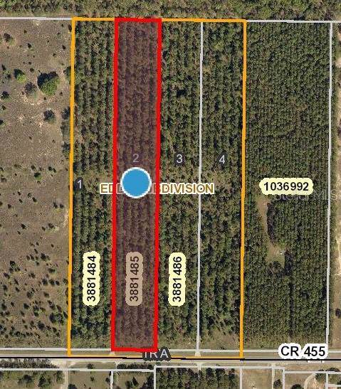 County Road 455, Clermont, FL 34711 (MLS #O5809474) :: Bustamante Real Estate