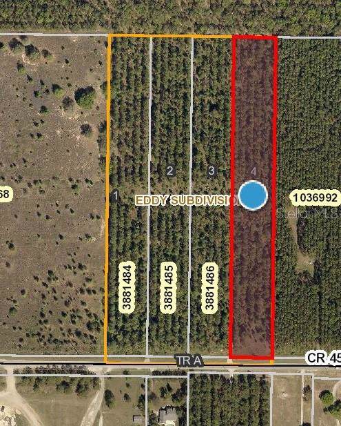 County Road 455, Clermont, FL 34715 (MLS #O5809480) :: Bustamante Real Estate