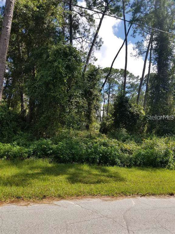 2600 Coachman Drive, Deltona, FL 32738 (MLS #O5809918) :: Ideal Florida Real Estate