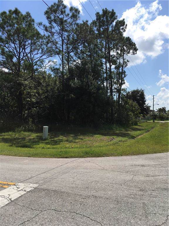 Nancy Court, Kissimmee, FL 34759 (MLS #O5811543) :: Griffin Group