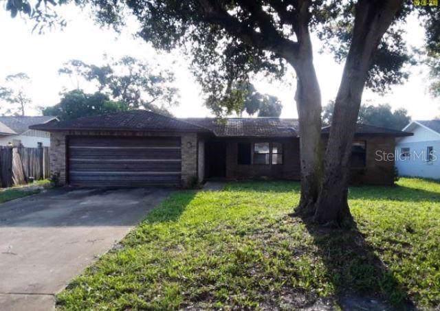 5147 Taylor Avenue, Port Orange, FL 32127 (MLS #O5811886) :: Florida Life Real Estate Group