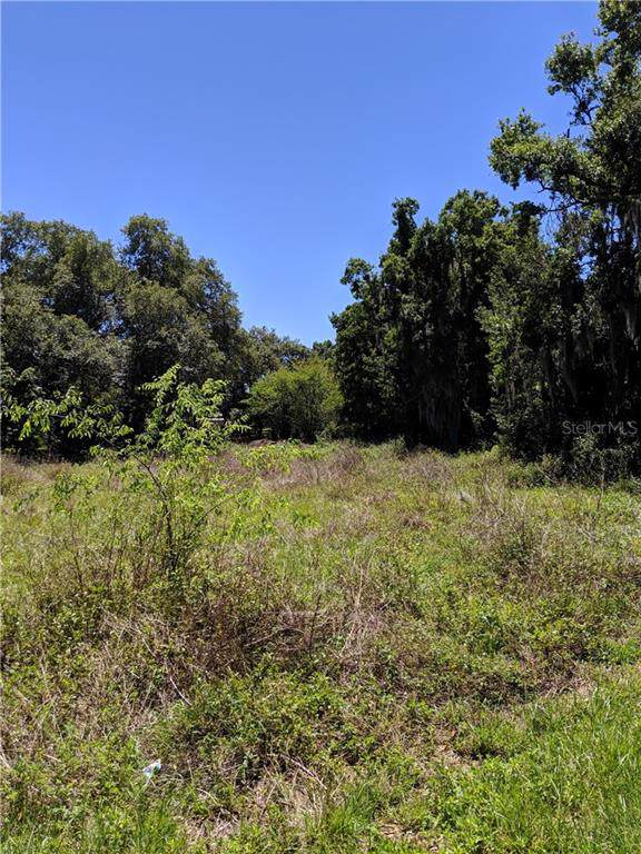 Dixon Street, Mulberry, FL 33860 (MLS #O5812280) :: EXIT King Realty