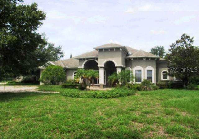 17244 Breeders Cup Drive, Odessa, FL 33556 (MLS #O5812301) :: The Nathan Bangs Group