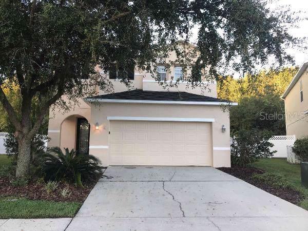 26748 Stillbrook Drive, Wesley Chapel, FL 33544 (MLS #O5818319) :: Team Bohannon Keller Williams, Tampa Properties