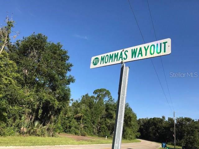 196 Mommas Wayout, Osteen, FL 32764 (MLS #O5818491) :: Cartwright Realty