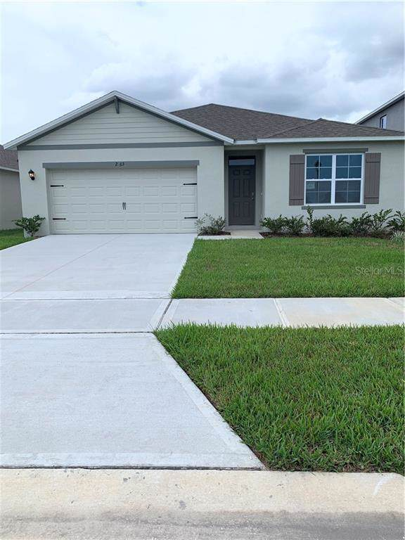2463 White Lilly Drive, Kissimmee, FL 34747 (MLS #O5821486) :: Florida Real Estate Sellers at Keller Williams Realty