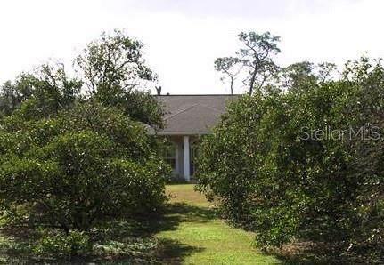 5100 Alligator Lake Road, Saint Cloud, FL 34772 (MLS #O5823374) :: Team Bohannon Keller Williams, Tampa Properties