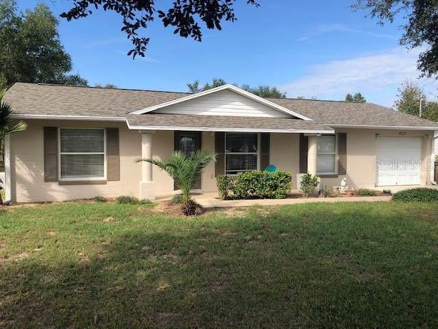 40529 W 6TH Avenue, Umatilla, FL 32784 (MLS #O5823380) :: Cartwright Realty