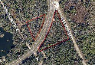 S Us Hwy 1, Oak Hill, FL 32759 (MLS #O5824480) :: Cartwright Realty