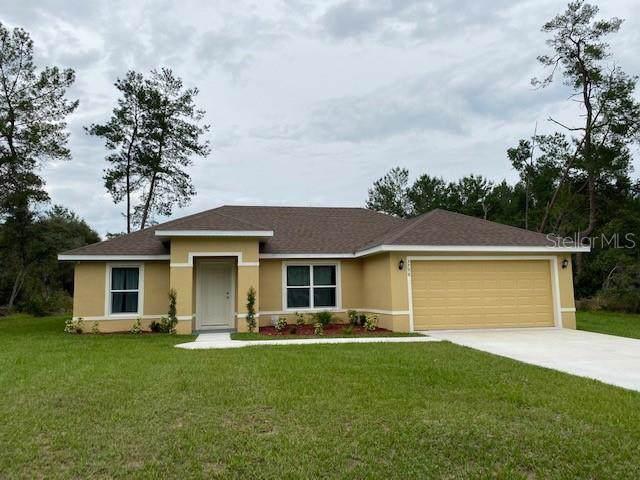 16805 SW 167TH Road, Ocala, FL 34474 (MLS #O5824904) :: Baird Realty Group