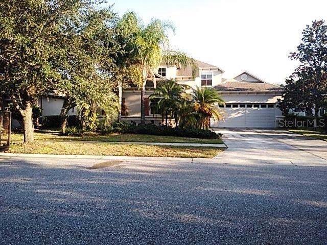8115 Hampton Glen Drive, Tampa, FL 33647 (MLS #O5825185) :: Team TLC | Mihara & Associates