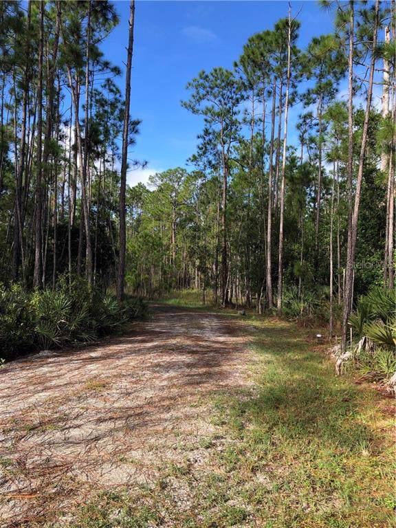 911 Wild Pine Road, Mims, FL 32754 (MLS #O5826526) :: 54 Realty