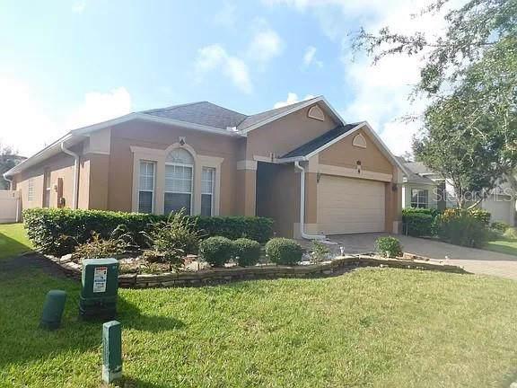11514 Stagbury Drive, Orlando, FL 32832 (MLS #O5829320) :: The Light Team