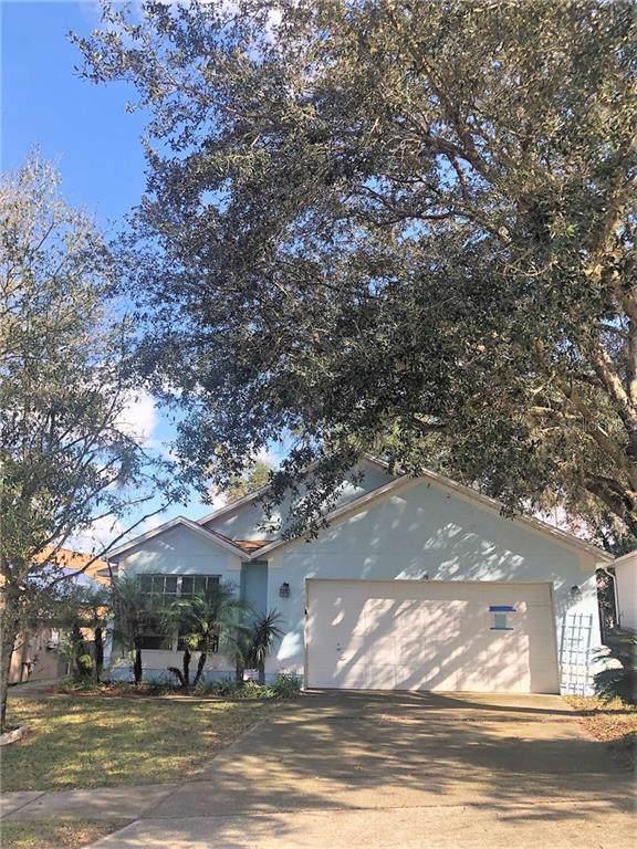 19 N Cervidae Drive, Apopka, FL 32703 (MLS #O5833117) :: Armel Real Estate